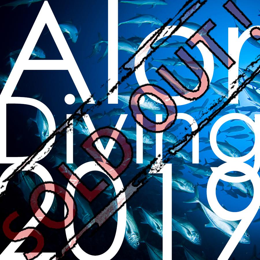 Alor Diving with Donovan, Alor island, scuba, diving, donovan whitford, packages, trips, holiday, NTT, Indonesia, Nusa Tenggara Timur, East Nusa Tenggara, 2019
